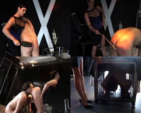 Miss Cheyenne spanking her slave, spanked jerk, clip